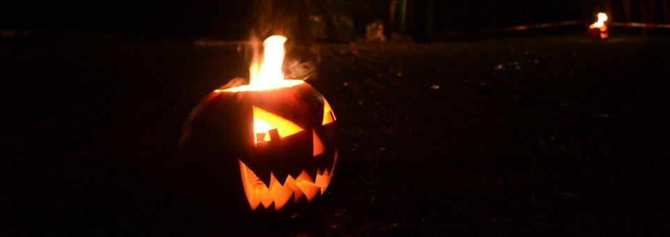 Halloween – Darüber scheiden sich die Geister